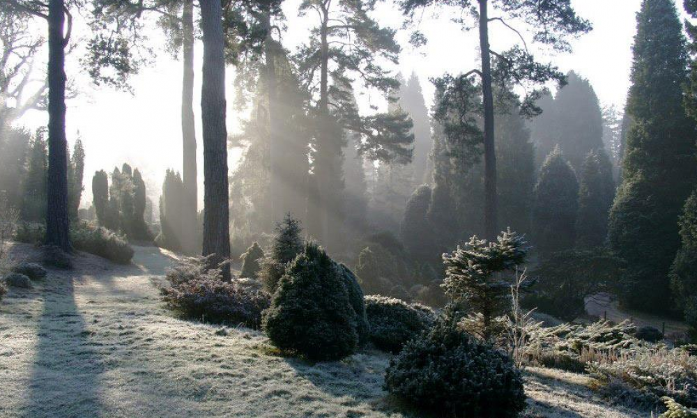 Dalby The Great Yorkshire Forest